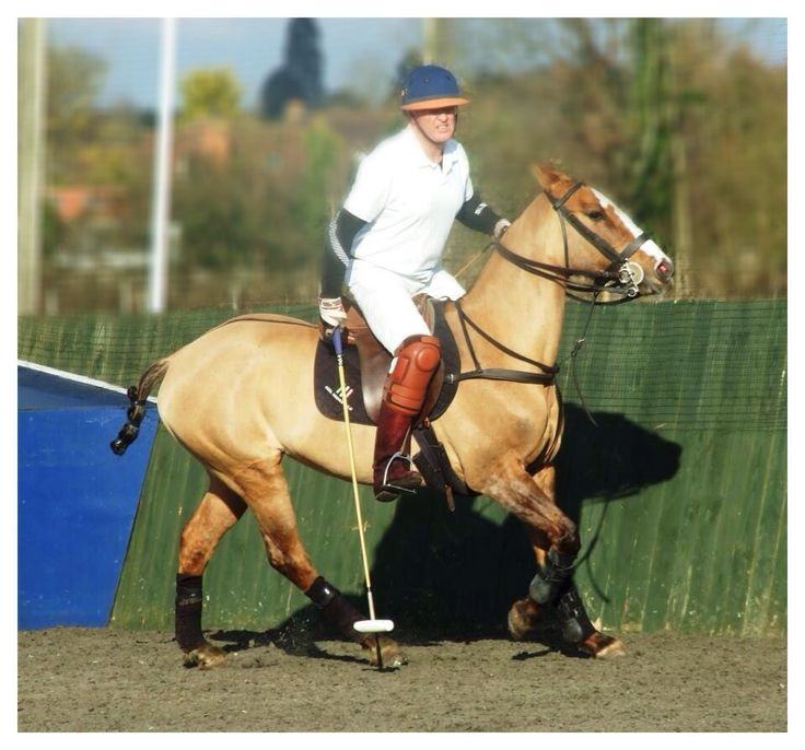 """One of my favourite horses to have ever played in the winter arena season """"Galetta"""". Didn't want to draw or paint it as it is me in the photo but I like it anyway!!!"""