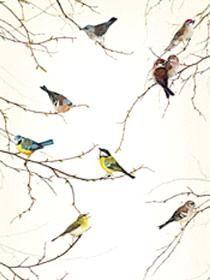 21014 - Mural | Komar Photomurals Vol 11 National Geographic | StevesWallpaper.com