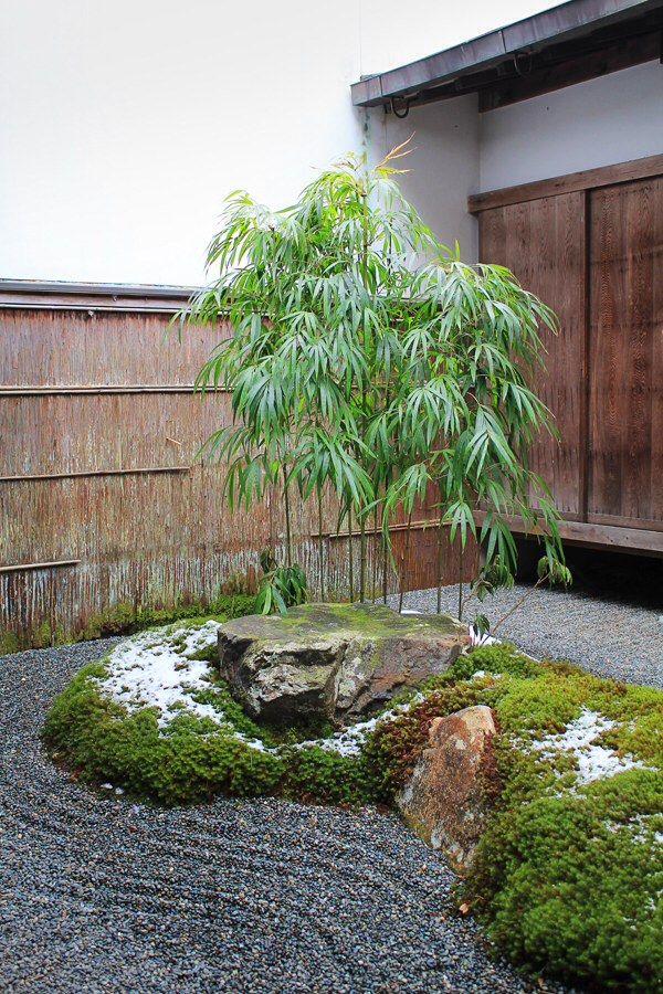 Rear of house Japanese garden. Courtyard, Sanzen-in, Kyoto