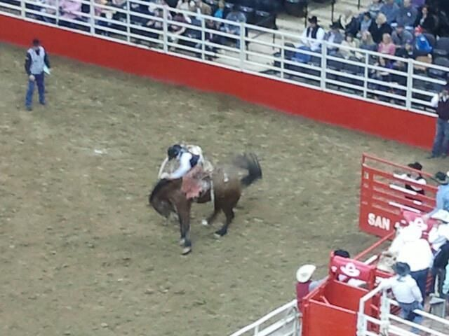 San Antonio Livestock Show and Rodeo