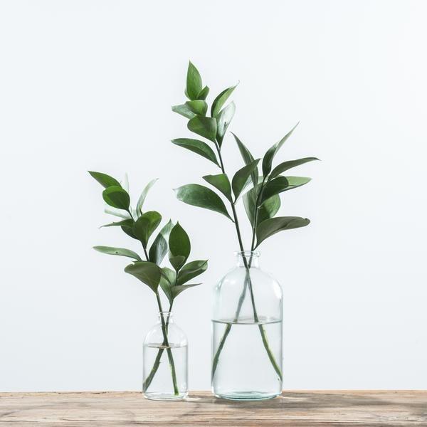 Vintage Apothecary Bottle – Magnolia | Chip & Joan…