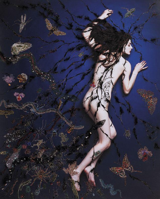2008「hair」complexシリーズ - WORKS|清川あさみ|ASAMI KIYOKAWA INC.