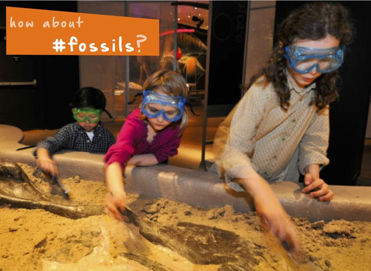 Dig for #fossils and learn about #dinosaurs! #thingstodo #kidsactivities #yuggler