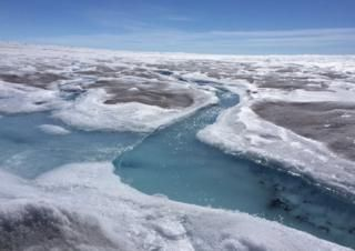 Sea level warning as Greenland darkens - BBC News