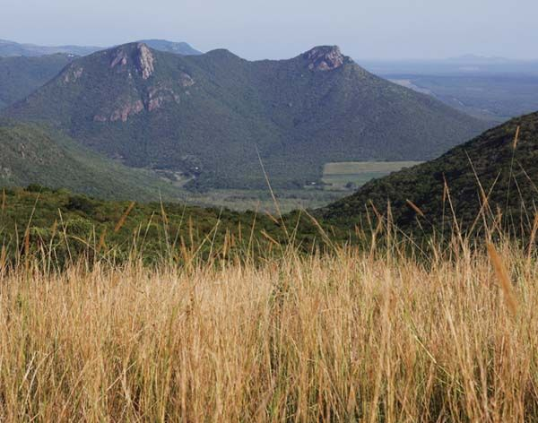 Ghost Mountain Inn on the Elephant Coast of Zululand South Africa in Jetsetters Magazine at www.jetsettersmagazine.com