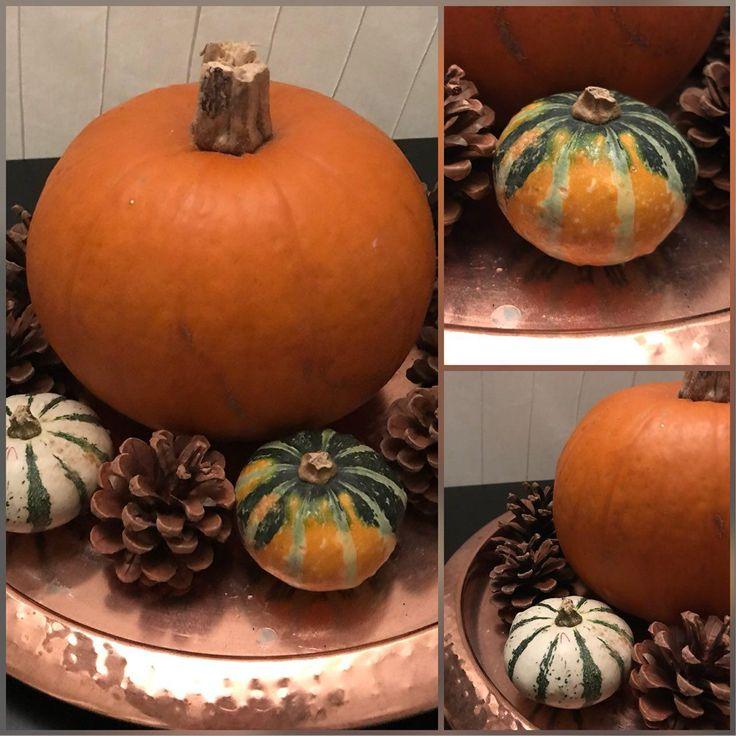 Voor sommigen is de herfstvakantie net voorbij of begint hij juist net. Voor anderen is er helaas even geen vakantie... Maar het is evengoed eind oktober, en het is tijd om de herfst in huis te halen. Lees meer op www.addellen.nl  #blog #blogger #autumn #fall #decoration #decoratie #dennenappel #egel #goud #herfst #pompoen #hedgehog #pumpkin #diy #doityoursef #fun #home  #decoratie #dennenappel #egel #goud #herfst #pompoen
