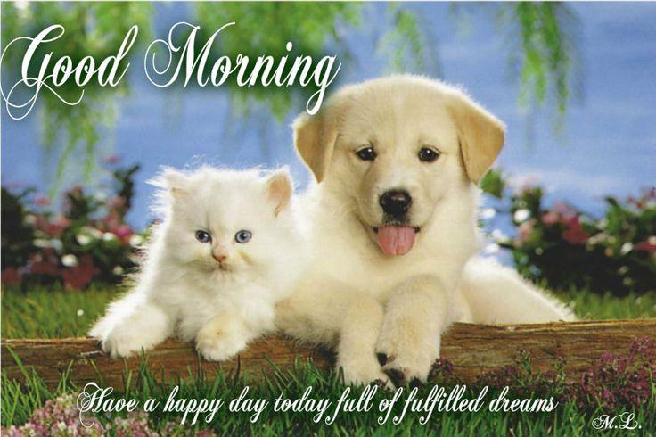 Mějte příjemný den plný splněných snů...