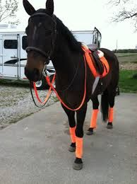 Neon orange English saddle pad leg wraps reins and half pack (white)