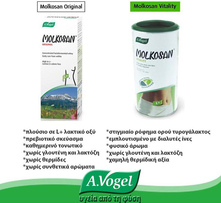 Ο ορός τυρογάλακτος υπόκειται σε λακτικές ζυμώσεις, ώστε καζεΐνη και λακτόζη να απουσιάζουν από το σκεύασμα. Η διαδικασία της ζύμωσης μετατρέπει τη φυσική λακτόζη σε γαλακτικό οξύ. Είναι φυσικό αντισηπτικό και αναστέλλει την εξάπλωση των παθογόνων μικροοργανισμών στο δέρμα, τους βλεννογόνους ιστούς και σε ολόκληρο το πεπτικό σύστημα.   Το L+ γαλακτικό οξύ βοηθάει στην υποστήριξη των φιλικών βακτηρίων του εντέρου, δημιουργώντας ένα περιβάλλον εχθρικό για βακτήρια και ευκαιριακούς μύκητες.