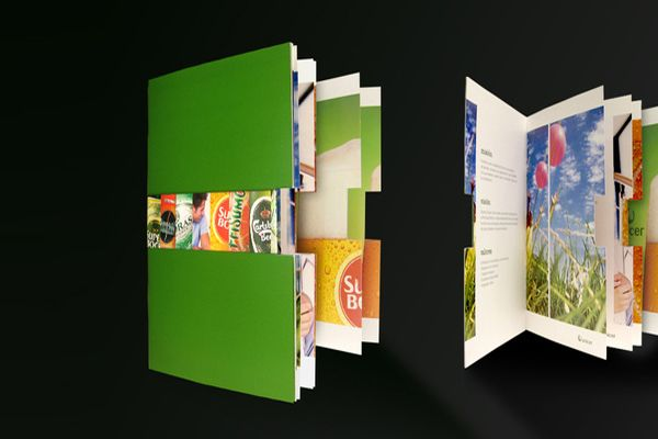 Unicer Corporate Brochure.
