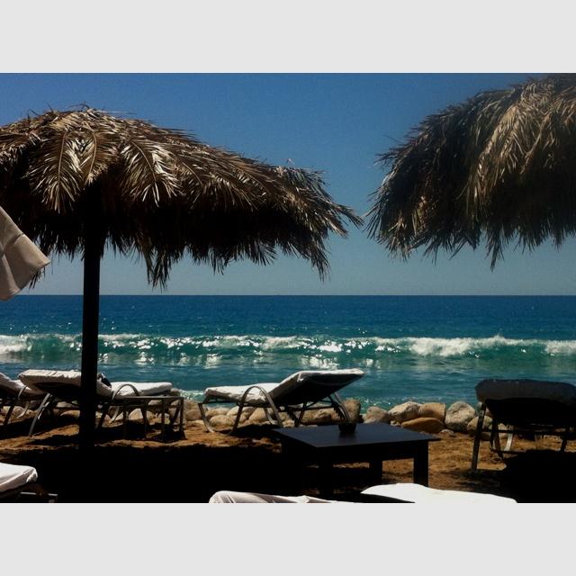 Blue Marlin Ibiza!