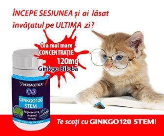 http://herbashop.ro/ginkgo-120-stem