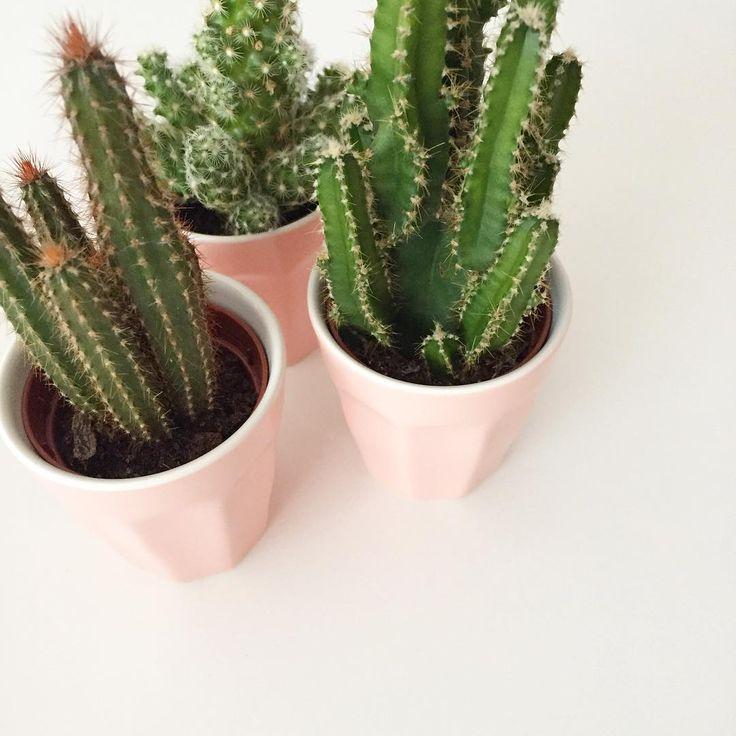 Meer dan 1000 idee n over kamer tekenen op pinterest wasruimte borden wasgoed borden en - Roze kleine kamer ...