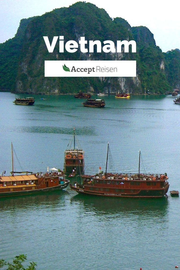 Vietnam verzaubert! Mit atemberaubender Natur, spannenden Dschunkenfahrten und Genüssen lokaler Köstlichkeiten