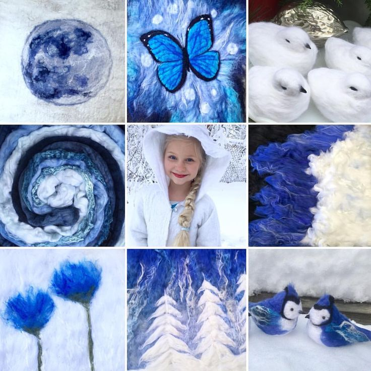 "425 Likes, 24 Comments - Lois McDonald-Layden (@tuckamoorwildcrafts) on Instagram: ""Some wintry blues and white on this cold, bright January day. ❄️We are due for a snowstorm tomorrow…"""