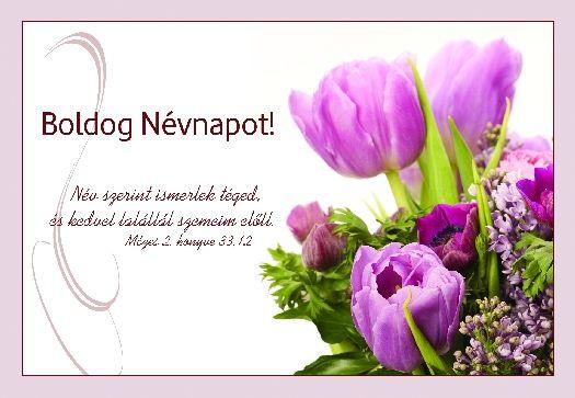kepeslap-boldog-nevnapot-tulipan-csokor-nev-szerint-ismerlek-teged.jpg (525×363)