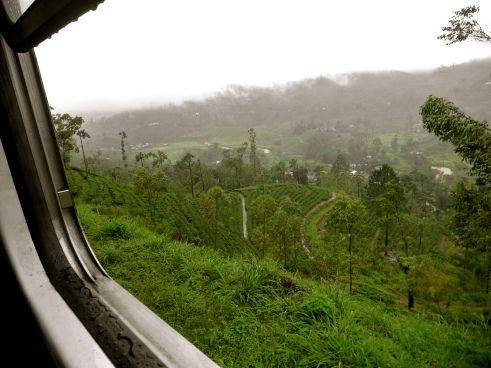 Sri Lanka's tea country on the train from Kandy to Ella.