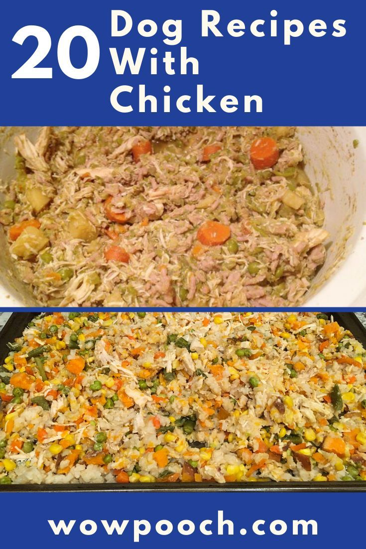 20 Dog Food Recipes With Chicken In 2020 Grain Free Dog Food
