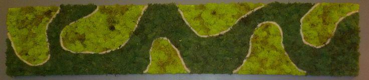 Tableau végétal stabilisé 30 x 90 cm lichen bicolore : Décorations murales par caly-design-vegetal