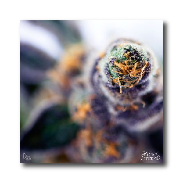 Dank Bud Weed Sticker - Marijuana Sticker 0118