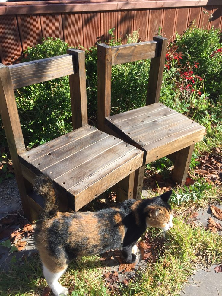 mini chair(미니의자)