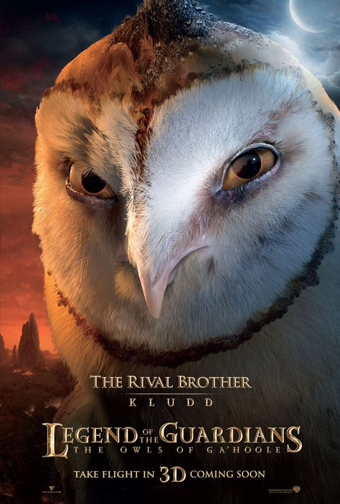 legend of the guardians owl images | kludd the owl from legend of the guardians the owls of ga hoole ...