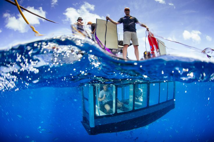"World's first Shark ""Aqua Sub"". A new way to view Great White Sharks in their natural habitat. Underwater Glass viewing area. View Sharks while staying dry!"