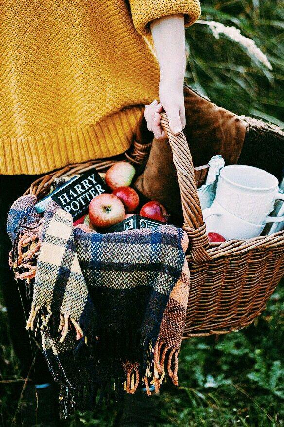 Осенний пикник  осенью