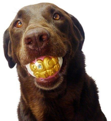 Humunga Bling Rock Star Teeth Shaped Ball Toy for Medium and Large Dogs...NEW #Humunga