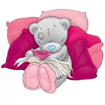 ʕ •́؈•̀ ₎♥ Cushion and warm soup. Tatty teddy
