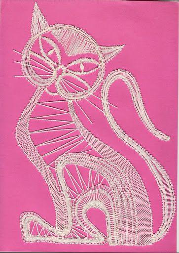 Mačka- Picasa Web Album