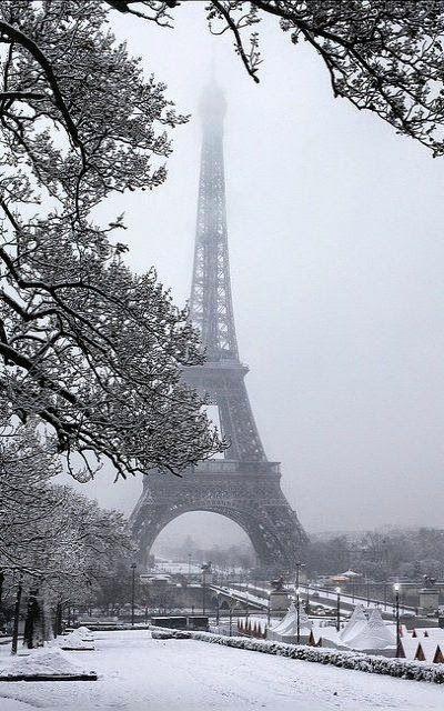 Winter in Paris...