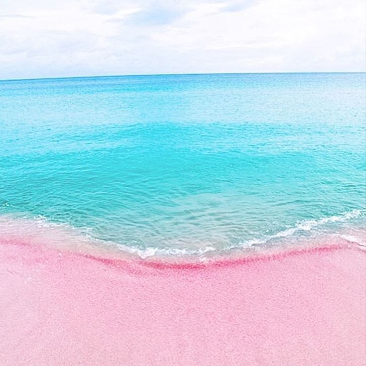 Best 25 pink sand beach ideas on pinterest pink sands for Bahamas pink sand beaches