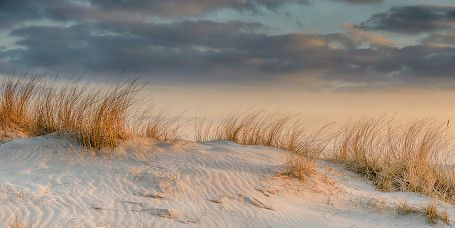 Golfen auf Norderney ►► Golfen zwischen den Dünen und mit Ausblick auf die Nordsee? Auf Norderney ist das möglich! Golffreunde erwartet ein abwechslungsreicher 9-Loch-Golfplatz mit hochgelegenen Abschlägen, herausfordernden Grüns und ständigem Seewind. Ein Highlight: Sie haben fast immer das Weltkulturerbe Wattenmeer im Blick. Nutzen Sie die Gelegenheit und stellen Sie sich der Herausforderung auf Norderneys natürlichem Links-Course.