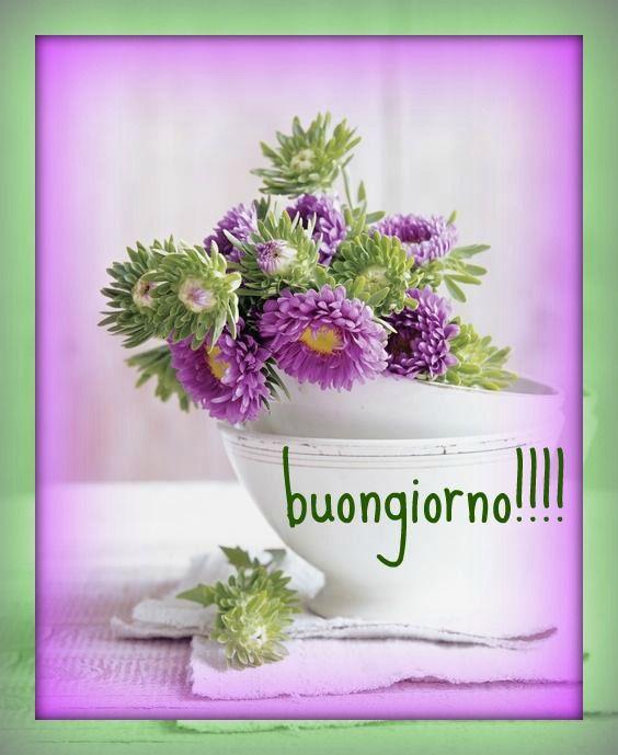 Buongiorno il buongiorno a fiori pinterest for Buongiorno o buon giorno immagini