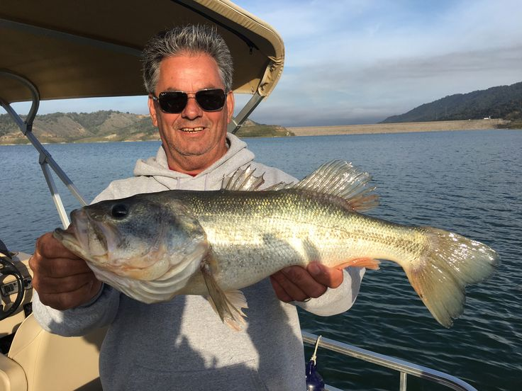 Lake Casitas Bass Fishing Guide Service - 05/30/2017 - Well we were back at it from sun up till sundown today. Fishing live shad is really the key to success right now. Fishing with artificial lures is very tough. Were able to get out in the morning and net some really nice bait fish to fish with and it's resulting in some great catches for clients. Here's a beautiful big 6 pound largemouth bass taken with live shad on the afternoon trip today. Anglers interested in booking a fishing trip…