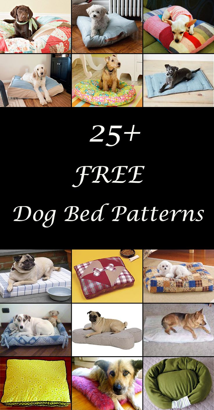 DIY dog beds. Dog bed sewing patterns & tutorials. How to make a homemade dog bed, pillow or cushion. Cute dog bed ideas.