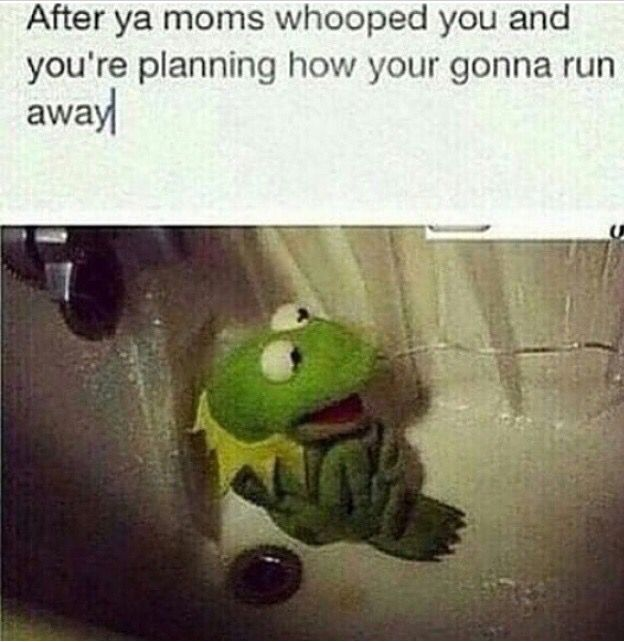 Running Away Funny Meme : Best images about kermit on pinterest glass storm