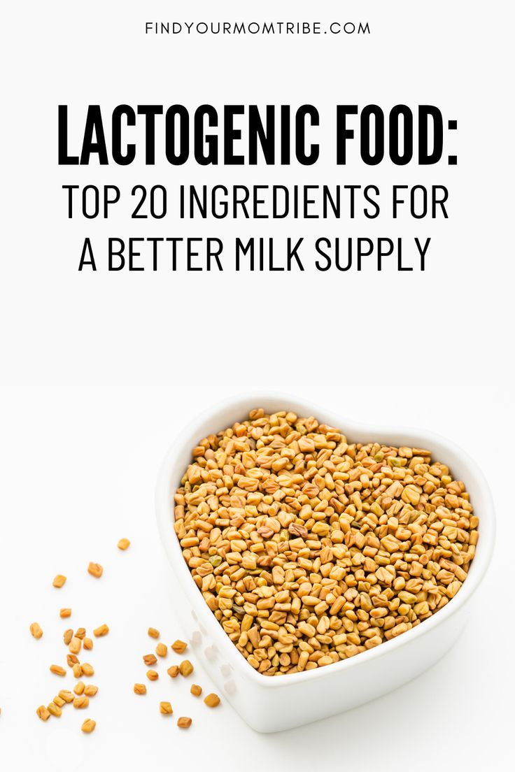 Lactogenic Food Top 20 Ingredients For A Better Milk
