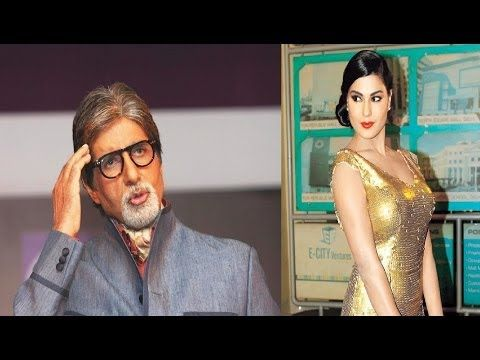 Veena Malik wants to MARRY a man like Amitabh Bachchan.