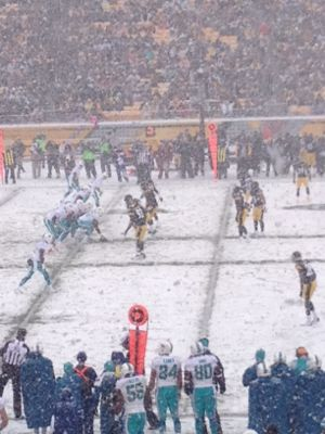 I saw a game like this in the 70's against the Brownies at Three Rivers Stadium.  Now THIS is #Steelers football weather! 12/8/13