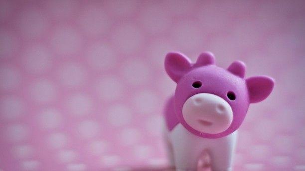 Happy Cow App Makes Veg Life Easier