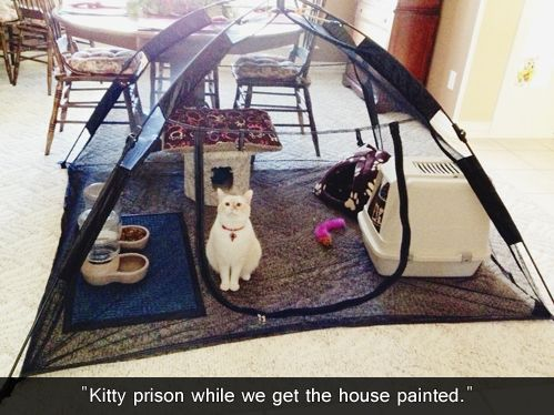 This is really smart, wish I would have thought of this when we were painting!