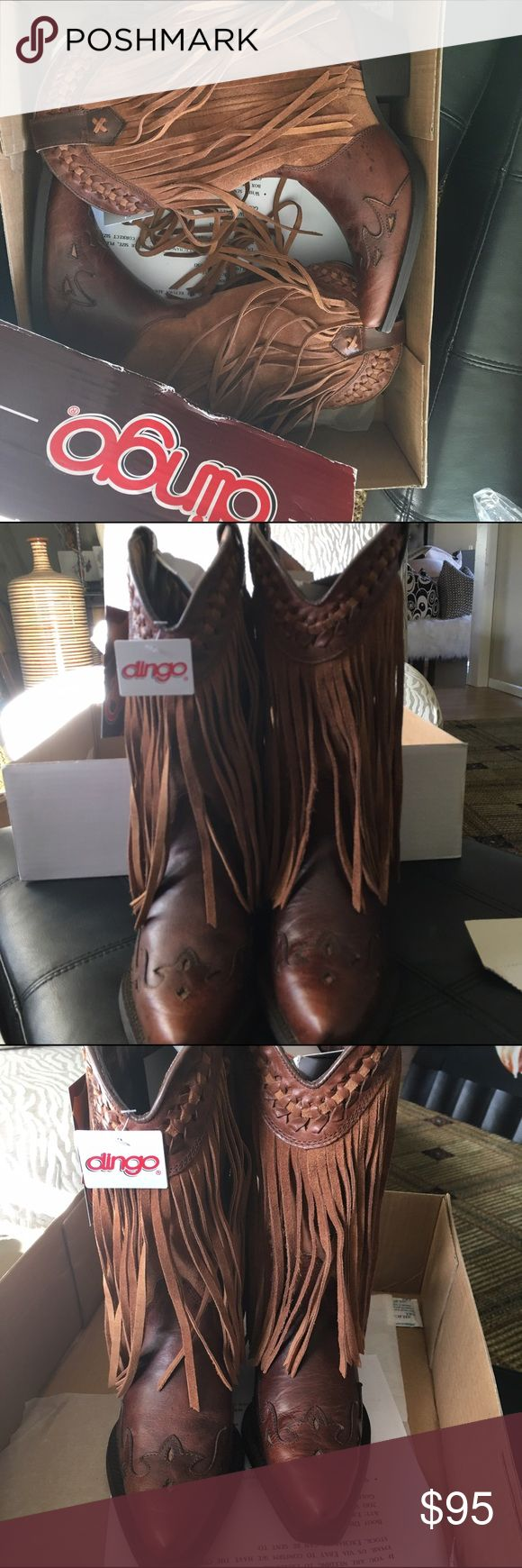 BRAND NEW DINGO LEATHER FRINGE COWBOY BOOTS~SIZE 8 LOW COWBOY BOOTS, BRAND NEW DINGO LEATHER COWBOY BOOTS WITH SUEDE FRINGE~FROM THE ORIGINAL COWBOY BOOT BRAND DINGO. SIZE 8. DINGO Shoes Heeled Boots