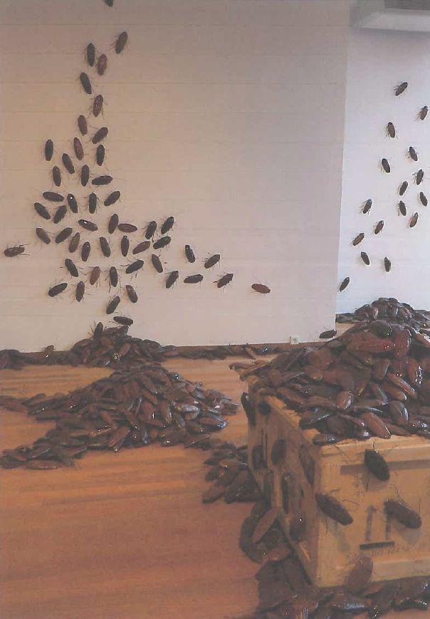 Griezelige Reggio Knutsel. Kakkerlakken van keramiek. www.berendbotje.nl