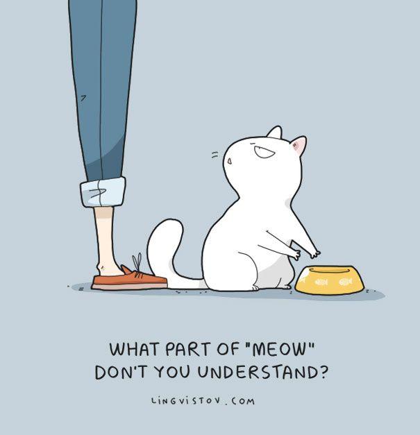 Altijd al willen weten hoe dieren denken en wat voor gedachten zij hebben? Ze zijn net zo hilarisch als de gedachten die mensen hebben.
