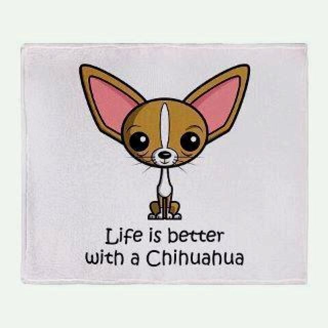Duh. I have a chihuahua and my life isn't better,it is complete. ;)