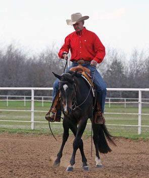 Slick Sidepass~Master the sidepass for optimal control over your horse's front and hind ends.