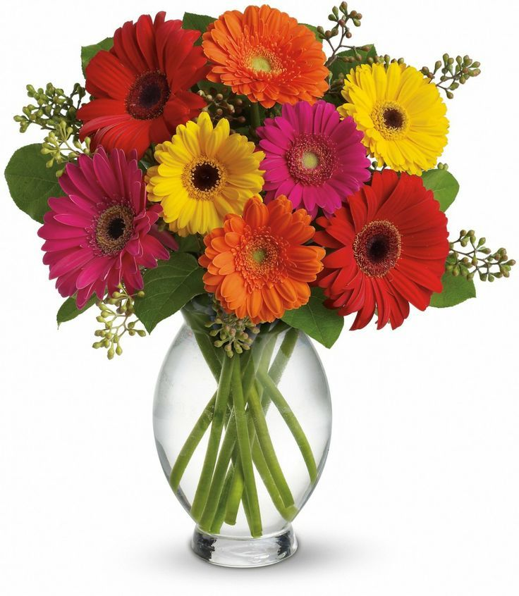 Gerberas are know for their freshness and happy smile and what is a good gift than mixed colorful gerberas.