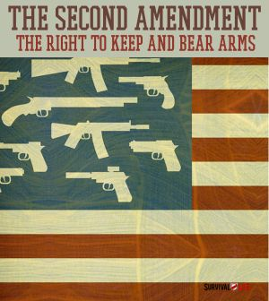 amendment essay second The use of the second amendment to block consideration of sensible gun control measures is a national disgrace and conservatives themselves have explained.